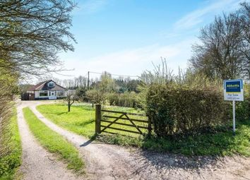 Thumbnail 4 bed bungalow for sale in Wymondham, Norfolk