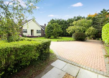 Thumbnail 3 bed bungalow for sale in Main Road, Kesgrave, Ipswich