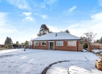 Thumbnail 3 bed detached bungalow for sale in Hermitage Road, Higham