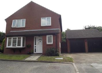 Thumbnail 4 bed property to rent in Chapel Croft, Ardleigh, Colchester