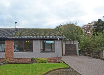 Thumbnail 3 bed semi-detached bungalow for sale in 85 Balmanno Park, Bridge Of Earn