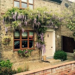 Thumbnail 2 bed cottage to rent in The Street, Earsham, Bungay