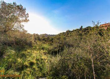 Thumbnail Land for sale in Urbanitzación Son Oliver 07199, Palma, Illes Balears