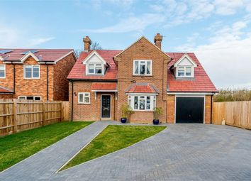 Thumbnail 4 bed detached house for sale in Biggleswade Road, Dunton, Biggleswade, Bedfordshire
