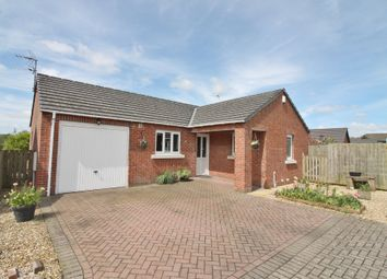 Thumbnail 2 bed detached bungalow for sale in Ladyseat Gardens, Longtown, Carlisle