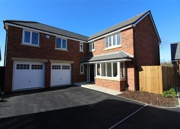 Thumbnail 5 bed property to rent in Mercia Grove, Poulton