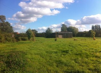Thumbnail 4 bed bungalow to rent in Mansfield Road, Edingley