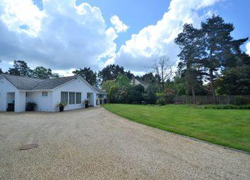 Thumbnail 3 bed detached bungalow for sale in Avon Castle, Ringwood, Hampshire
