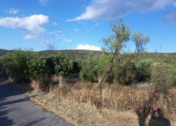 Thumbnail Land for sale in Laconia, Greece
