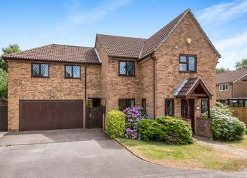 Thumbnail 6 bed detached house for sale in Old Catton, Norwich, Norfolk