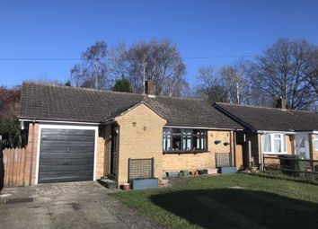 Thumbnail 3 bed bungalow for sale in Whitebeam Close, Horndean, Waterlooville
