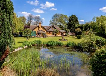 Thumbnail 5 bed detached house for sale in Fordbridge Road, Sunbury-On-Thames, Surrey