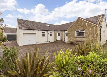 Thumbnail 4 bed cottage for sale in Malt Row, Pitlessie, Fife