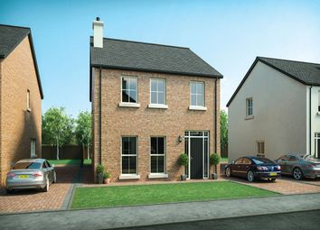 Thumbnail 4 bed detached house for sale in Moorfield Avenue, Comber, Newtownards