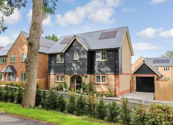Thumbnail 3 bedroom detached house for sale in Clewers Lane, Waltham Chase, Southampton