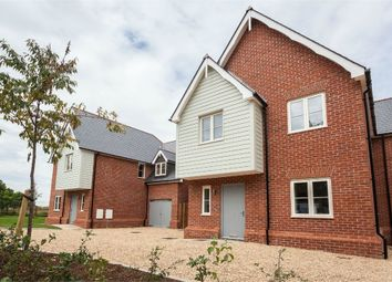 Thumbnail 4 bedroom detached house for sale in Ware Road, Widford, Ware, Herts