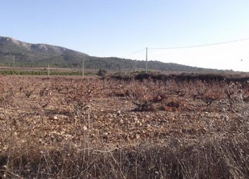 Thumbnail Land for sale in 03638 Salinas, Alicante, Spain