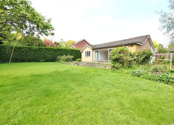 Thumbnail 3 bed detached bungalow for sale in The Retreat, Englefield Green, Surrey