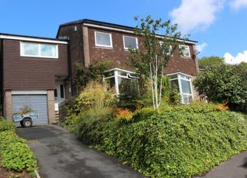 Thumbnail 4 bed semi-detached house for sale in Birchside Avenue, Spire Hollin, Derbyshire