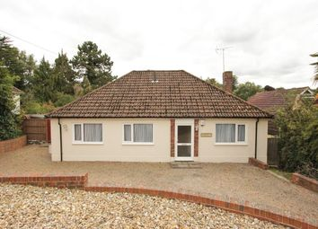 Thumbnail 4 bed bungalow to rent in The Drive, New Barn, Longfield