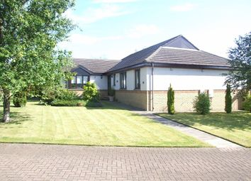 Thumbnail 4 bedroom detached bungalow for sale in Bucklerburn Wynd, Peterculter, Aberdeenshire