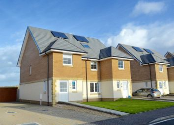 Thumbnail 4 bed property for sale in Primpton Avenue, Dalrymple, Ayr