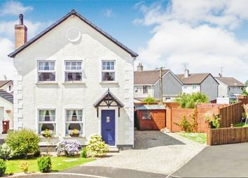 Thumbnail 4 bed detached house for sale in Gleneagles, Cloughmills, Ballymena, County Antrim