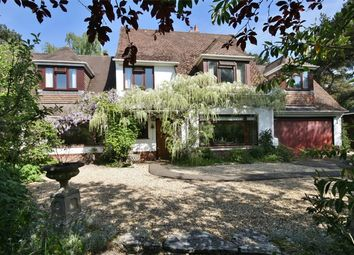 Thumbnail 4 bed detached house for sale in Greenacres Close, Ashley, Ringwood, Hampshire