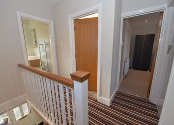 Thumbnail 4 bed property to rent in Kitchener Road, Southampton