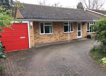 4 bed detached bungalow for sale in Back Street, Garboldisham, Diss IP22