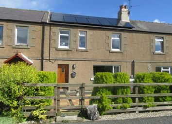 Thumbnail 2 bed cottage to rent in Norham, Berwick-Upon-Tweed