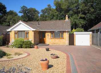Thumbnail 2 bed bungalow for sale in Pennington Road, West Moors, Dorset
