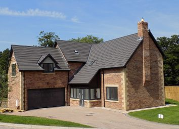 Thumbnail 4 bed detached house for sale in No.5, The Petteril, William's Pasture, Aglionby