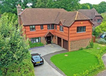 Thumbnail 6 bed detached house for sale in Hoewood, Small Dole, Henfield