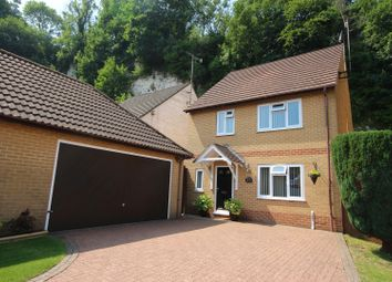 Thumbnail 4 bed detached house for sale in Badgers Rise, Dover