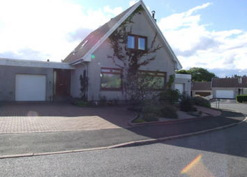 Thumbnail 4 bed detached house to rent in Hillside View, Westhill