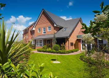 """Thumbnail 4 bedroom detached house for sale in """"Harborough"""" at Filter Bed Way, Sandbach"""