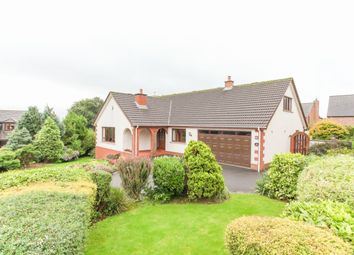 Thumbnail 4 bed bungalow for sale in The Chase, Parkgate, Ballyclare