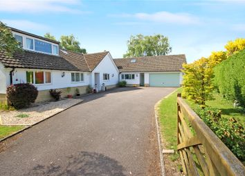 Thumbnail 5 bed bungalow for sale in Chestnut Springs, Lydiard Millicent, Wiltshire