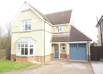Thumbnail 4 bed detached house to rent in Cornflower Way, Harrogate, North Yorkshire