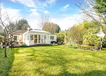 Thumbnail 3 bed detached bungalow to rent in London Road, Ascot