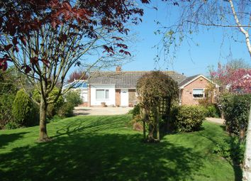 Thumbnail 3 bed detached bungalow for sale in West Close, The Causeway, Mark, Highbridge