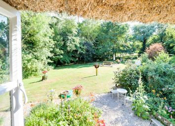 Thumbnail 4 bed cottage for sale in Offord Road, Graveley, St. Neots