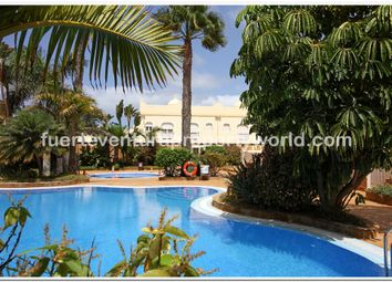 Thumbnail Town house for sale in Corralejo, Fuerteventura, Canary Islands, Spain