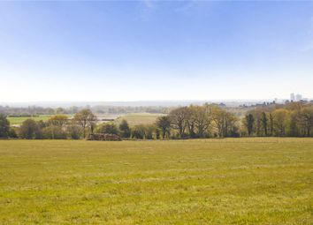 Ockham Lane, Cobham, Surrey KT11, south east england property
