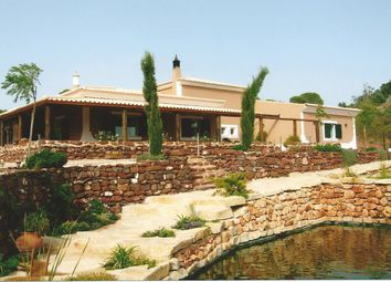 Thumbnail 4 bed detached house for sale in São Bartolomeu De Messines, Silves, Portugal