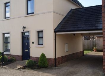 Thumbnail 3 bed detached house for sale in Lady Wallace Forge, Lisburn