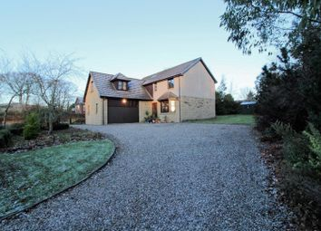 Thumbnail 4 bedroom detached house for sale in Auchterhouse, Dundee