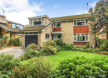 Thumbnail Detached house for sale in Wetherby Road, Harrogate