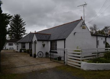 Thumbnail 5 bed detached bungalow for sale in Rowanburn, Canonbie, Dumfries & Galloway